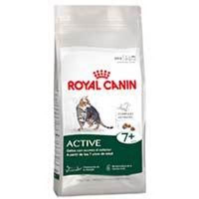 Royal Canin Active 7+