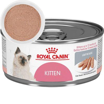 Royal Canin Latas Gatito Kitten 165gr (Pate)
