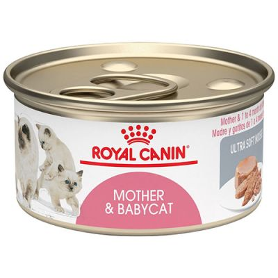 Royal Canin Latas Gatito Mother BabyCat