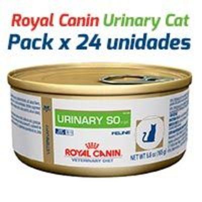 Royal Canin Latas Vet Diet Felino Urinary S/O x 24 Unidades