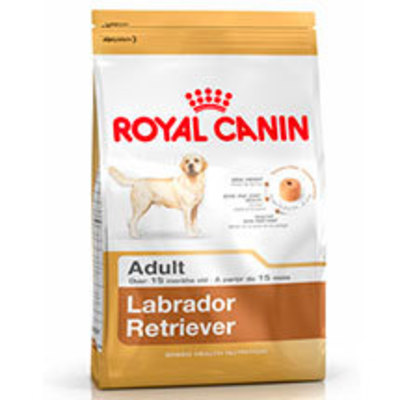 Royal Canin Labrador Retriever Adulto