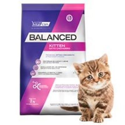 VitalCan Cat Kitten