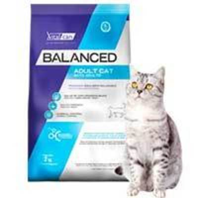VitalCan Cat Adulto