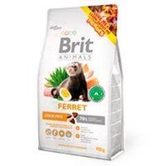 Brit Hurón - Ferret