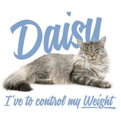 Brit Care Cat Daisy