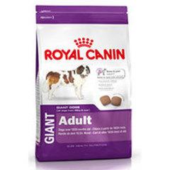 Royal Canin Giant Adulto
