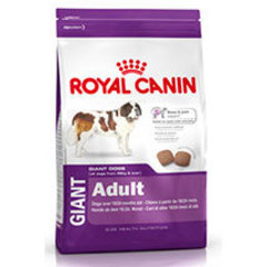 Royal Canin Giant Adulto
