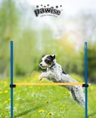 Pawise Agility Valla
