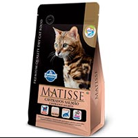 Matisse Gatos Adultos Castrados Salmón