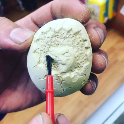 Dinosaurio huevo fosil