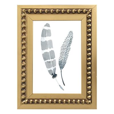 Colección plumas Tierra I