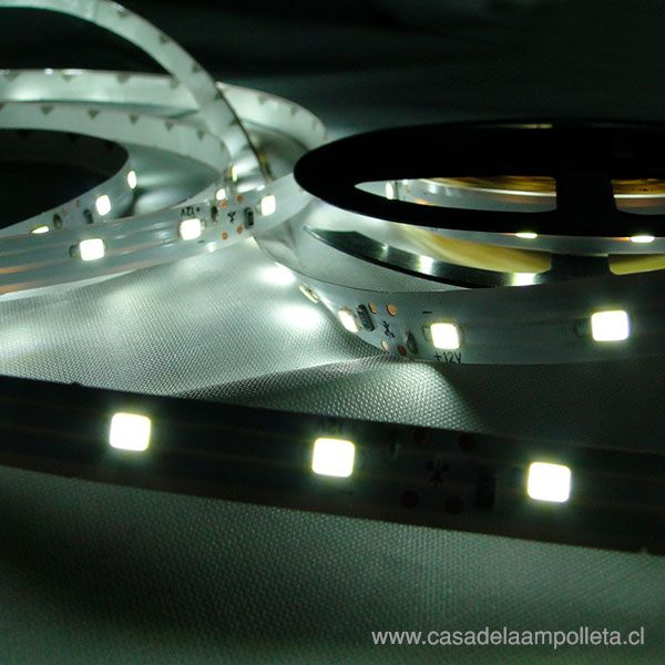 CINTA LED ROLLO 5 MTS 3528 SIN SILICONA - BLANCO FRIO (6500K)