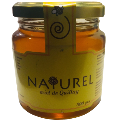 Miel de Quillay 300 gr, Naturel