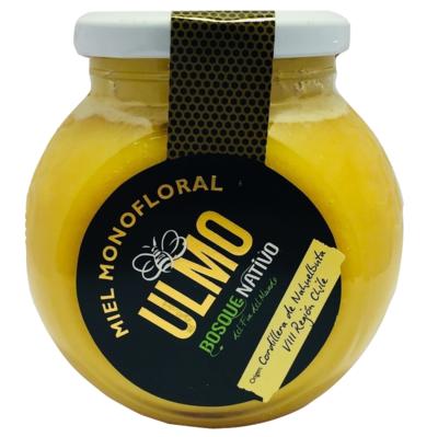 Miel de Ulmo Bosque Nativo
