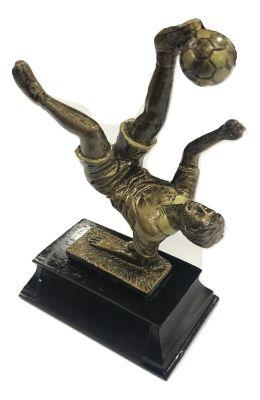 Trofeo Futbol Chilena