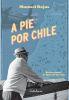 A pie por Chile - Manuel Rojas