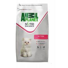 ANIMAL PLANET CAT KITTEN