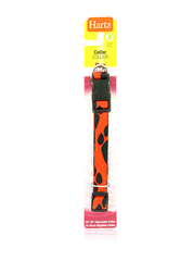 COLLAR DOG S 10-16 COLOR  DISEÑO