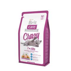 CAT KITTEN CRAZY BRIT CARE