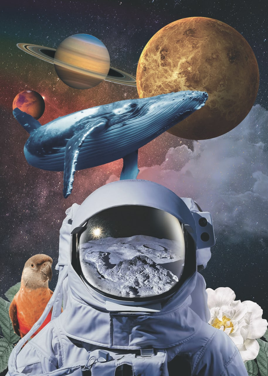 Lamina collage espacial
