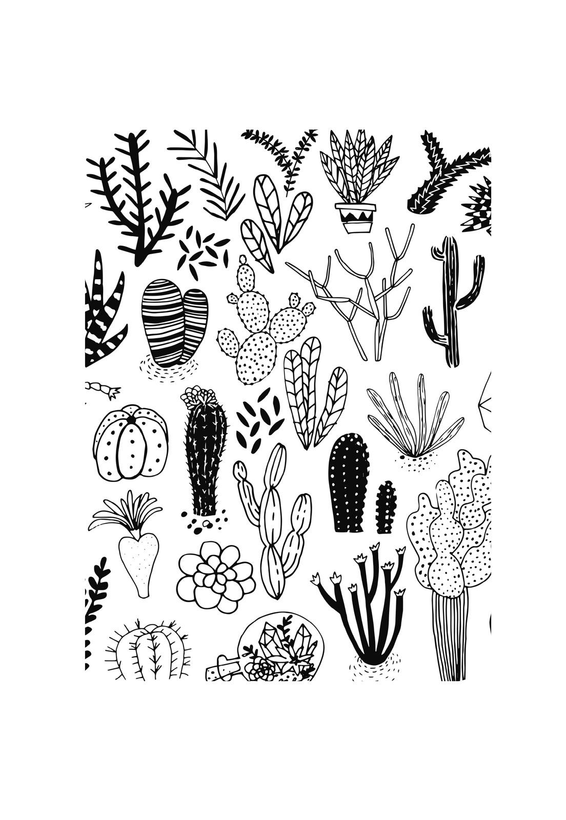 Libreta cactus blanco