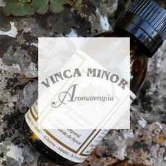 VINCA MINOR