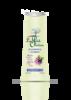 Shampoo Mirta y Arcilla 250 ml1