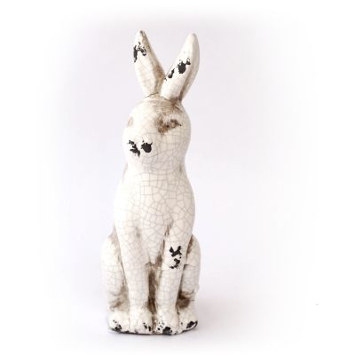 conejo blanco1