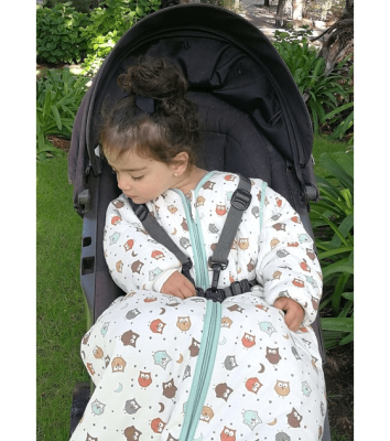 Dreambag Saquito Búho   6-18 meses