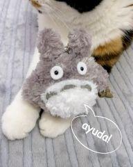 Totoro Peluche Llavero