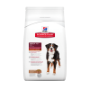 HILL'S SD CANINE ADULT L&R LARGE BREED BOLSA X 15 KG