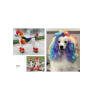 iFashion.pet - Libro de Colección Creative Grooming Edición 2020 (GB-03)