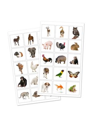 Distintivos animales