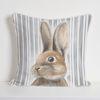 Funda Cojín Estampado Pedro Rabbit MS