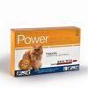 Power Gato 4 a 8 kg