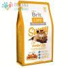 BRIT CAT SUNNY