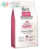 Brit Dog Puppy Salmon 12 Kg.