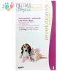 Revolution Gatos/Cachorros Hasta 2,5kg.