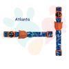 ZeeCat Collar Atlanta