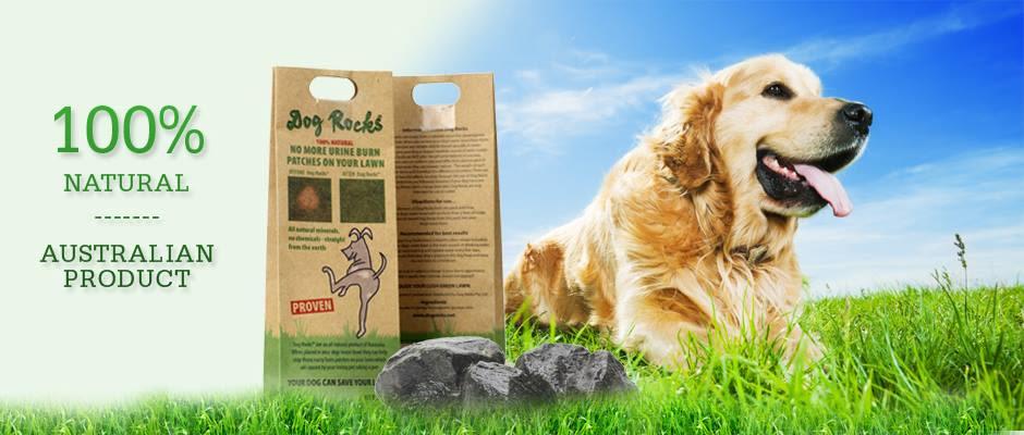 /product/dog-rocks-piedras-para-evitar-manchas-de-orina