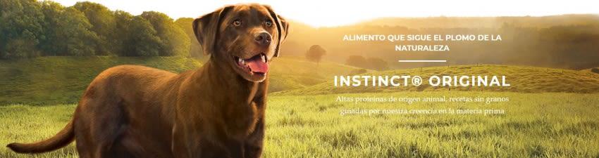 /collection/alimentos-secos-perro?brand_static[]=Instinct