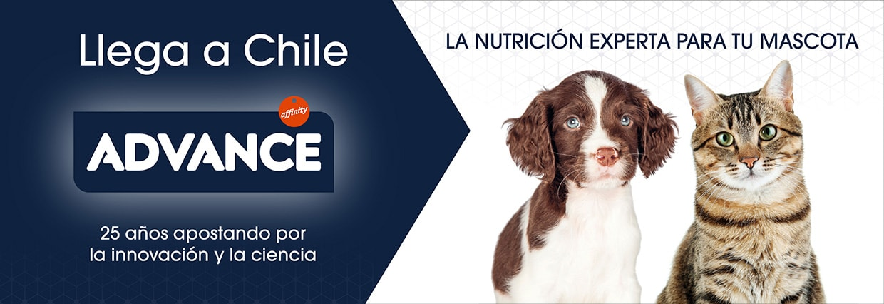 /collection/alimentos-secos-perro?brand_static[]=Advance