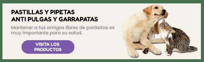 /collection/pulgas-y-garrapatas