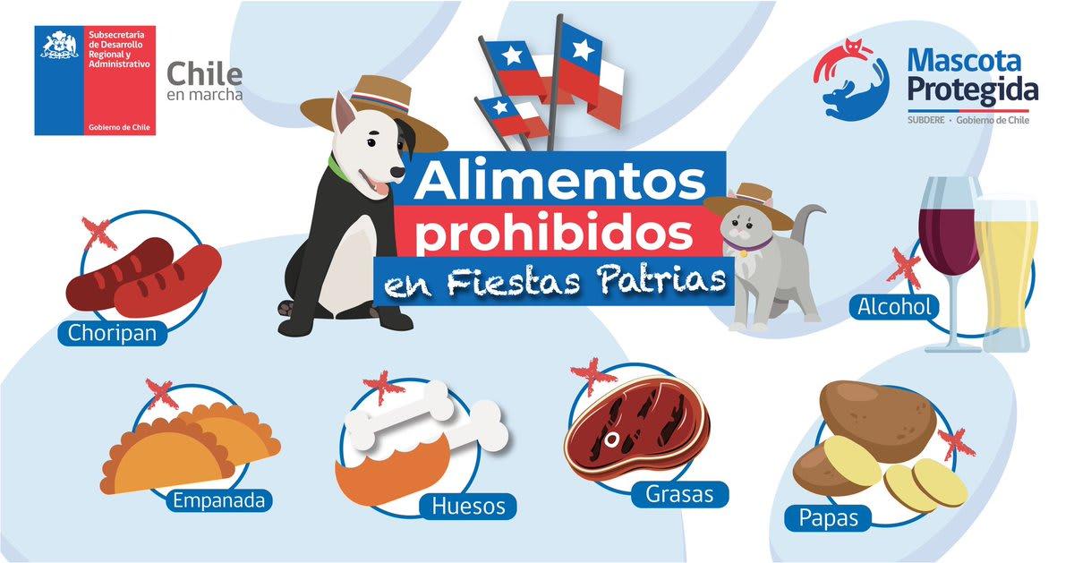 Cuidemos a Nuestras Mascotas en Fiestas Patrias