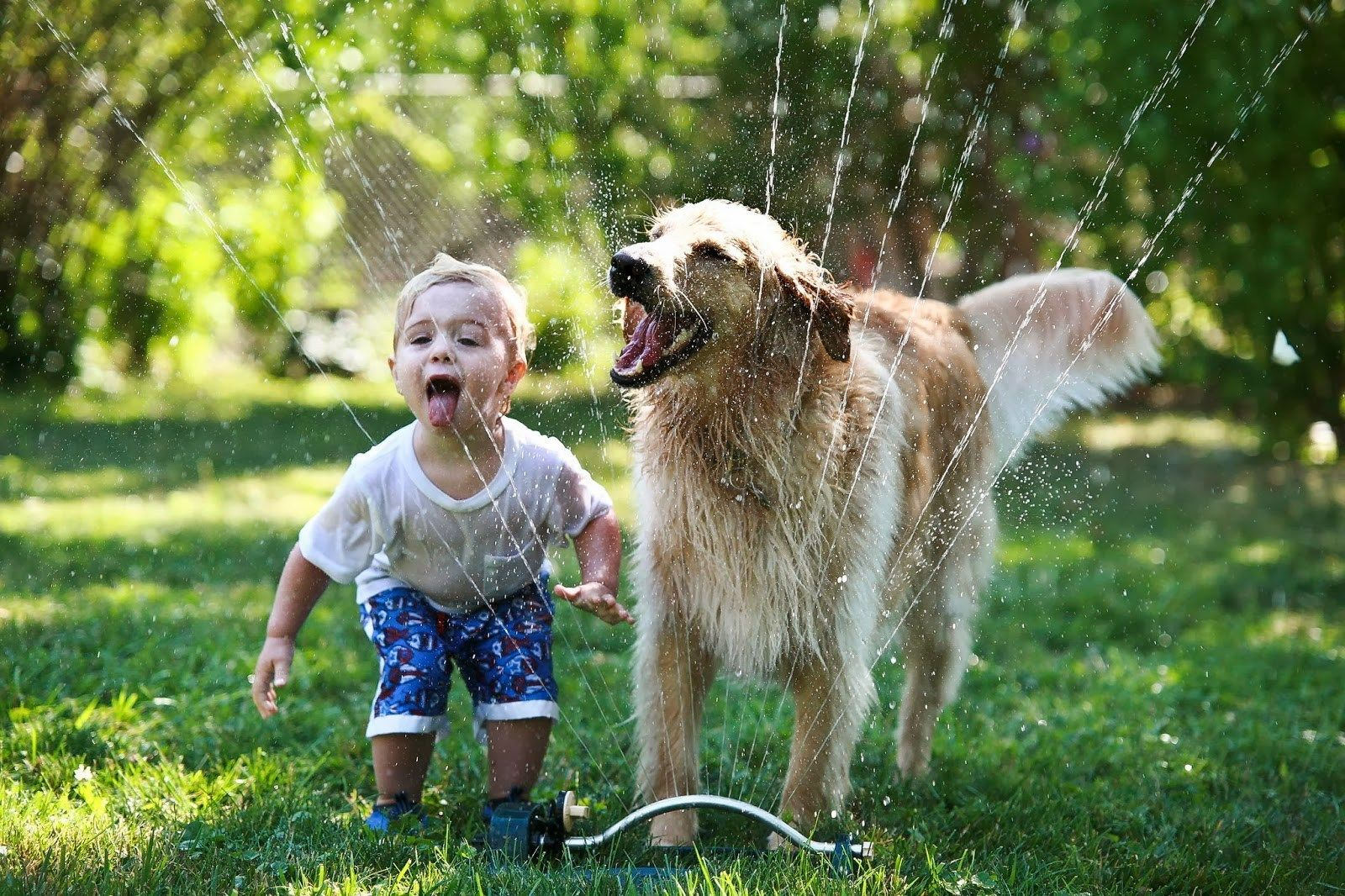 Beneficios del vínculo afectivo entre niños y mascotas