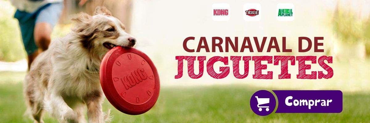 /collection/juguetes-perro