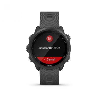 Reloj - Garmin Forerunner 245 Negro/Gris