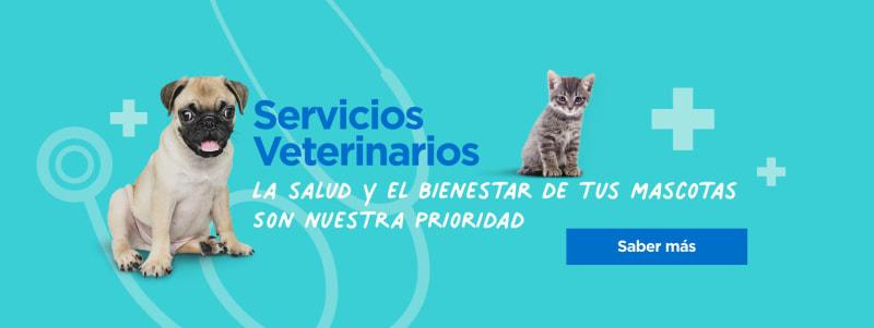 Servicios veterinarios, consulta, vacunas, puesta de chip