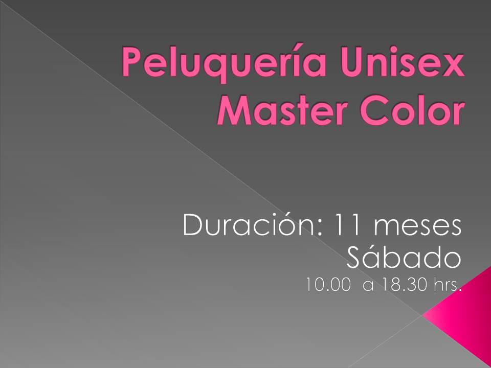 Curso Peluquería Unisex Master Color (Mensual) SD