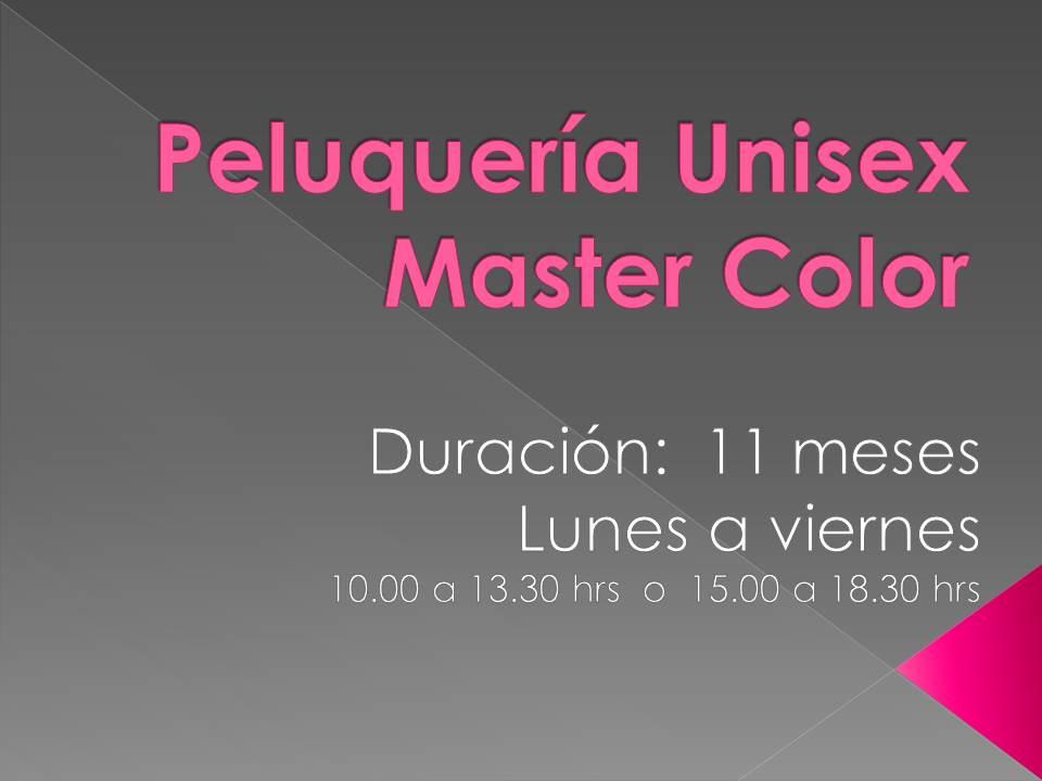 Curso Peluquería Unisex Master Color (Mensual)